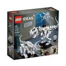 21320【LEGO 樂高積木】IDEA...