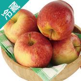紐西蘭蜜香蘋果60粒/箱(240g±5%/粒)【愛買冷藏】