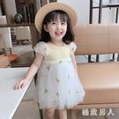 女童洋裝2020夏裝新款童裝連身裙兒童寶寶印花公主裙小女孩網紗裙子 HR139【極致男人】