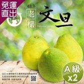 【預購】水果爸爸-FruitPaPa】 葫蘆墩48年老欉A級柚子文旦禮盒 10斤/箱x2箱【免運直出】