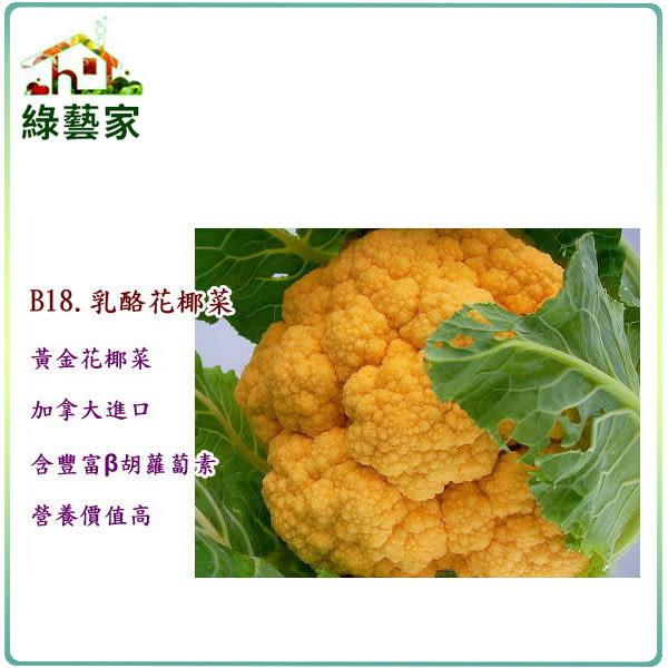 【綠藝家】B18.乳酪花椰菜種子3顆