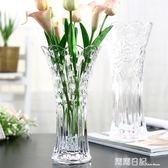 歐式大號玻璃透明花瓶 客廳擺件插花水培富貴竹百合干花落地飾品 露露日記
