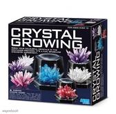 【4M】科學探索系列 神奇水晶體豪華組 Crystal Growing Experimental Kit 00-03915