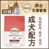 *WANG*美士NUTRO《全護營養 成犬-特級鮭魚+糙米、地瓜》30磅 狗飼料