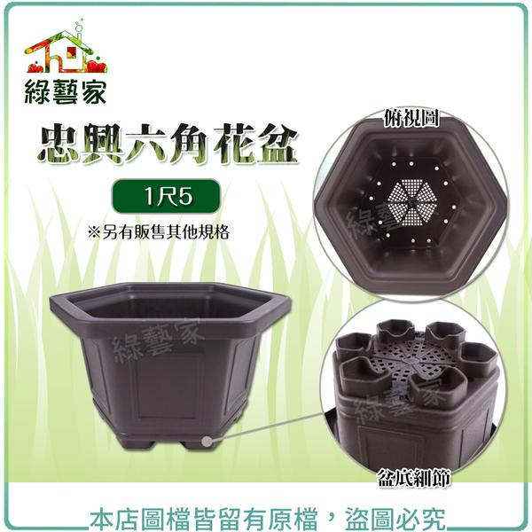 【綠藝家】忠興六角花盆 1尺5(加厚材質)