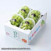 【果之蔬-全省免運】日本晴王麝香葡萄禮盒X1盒(4串/盒 每串約600g±10%)