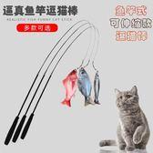 釣魚竿逗貓棒長桿貓玩具羽毛鈴鐺寵物貓咪用品小貓的逗貓互動玩具   傑克型男館