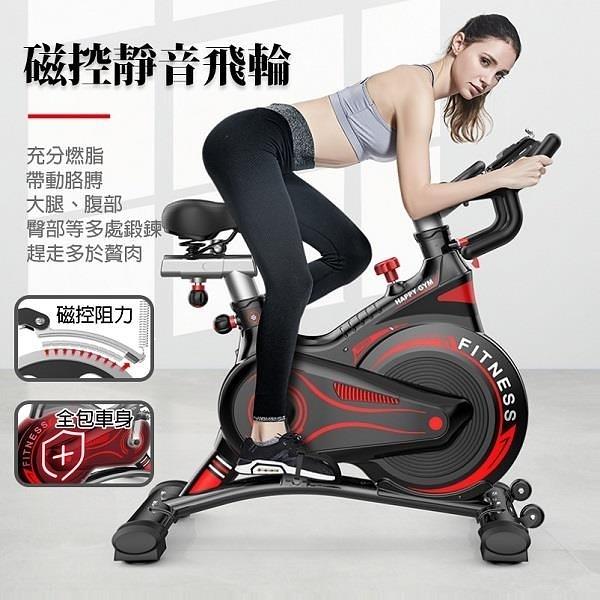 【南紡購物中心】【SILINK】旗艦磁控靜音飛輪-新升級一體全包飛輪健身車