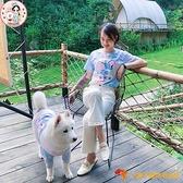 寵物親子裝 中大型犬扎染小象T恤狗狗衣服貓咪衣可定制【小獅子】