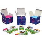 【奇奇文具】吉爾多 法國原裝 綠色 精裝粉筆(1盒10支)