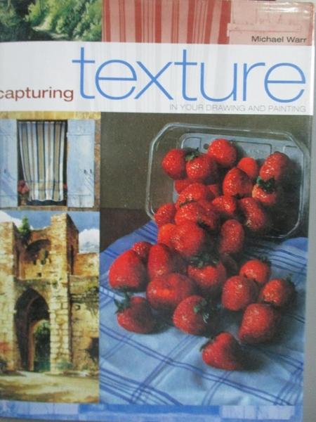 【書寶二手書T4/藝術_ZCL】Capturing Texture_Michael Warr