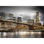 【拼圖總動員 PUZZLE STORY】紐約-天際線 義大利/Clementoni/1000P