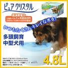 PetLand寵物樂園《日本GEX》大型犬用淨水飲水器4.8公升