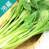 產銷履歷油菜1包(250g/包)【愛買冷藏】