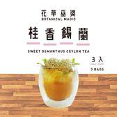 【花草巫婆】冷泡飲 桂香錫蘭3入裝/花茶/花草茶/冷泡茶-UH11NDJ211