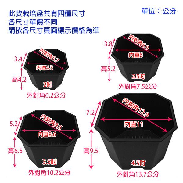 【綠藝家】景天八角方型盆2.5吋-黑色(3號)
