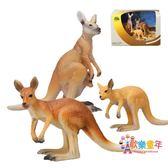袋鼠仿真動物模型玩具套裝實心塑料靜態野生生物模型5 禮盒裝澳洲