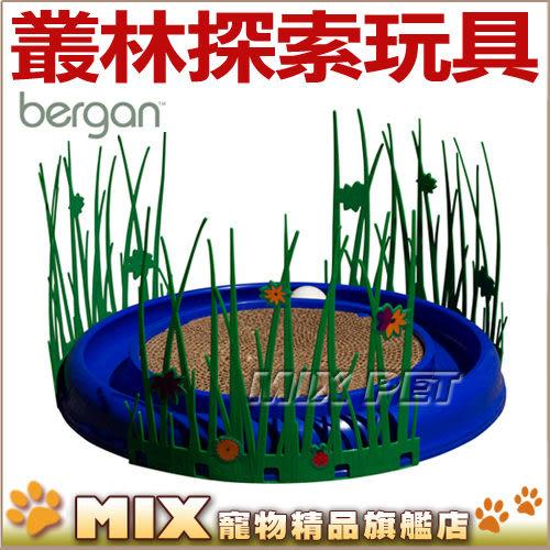◆MIX米克斯◆美國Bergan.叢林探索88316,可與Bergan貓玩具搭配使用在健身圓盤中