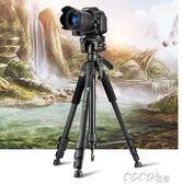 攝影架  3520單反相機三腳架攝影攝像便攜微單三角架手機自拍直播支架 coco衣巷