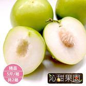 沁甜果園SSN.精品蜜棗5台斤/箱(共2箱)﹍愛食網