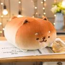 麵包家族抱枕-麵包狗狗 可愛療癒 棉床本...