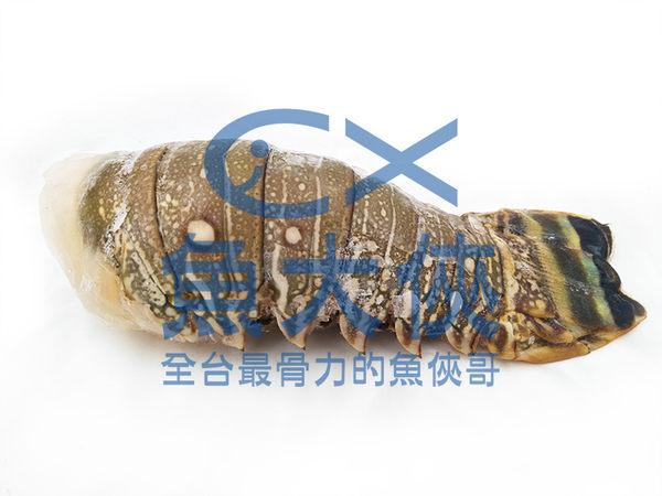 B2【魚大俠】SP029生凍去頭龍蝦尾(120g/±5%/尾)