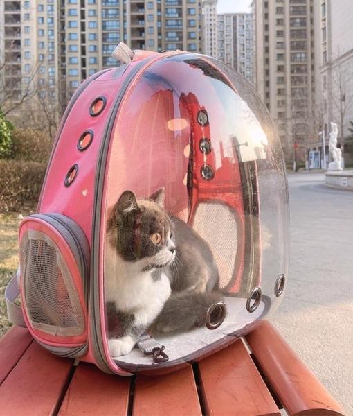 味當家貓包太空艙外出便攜後背透明大容量兩只狗包手提可伸縮側開 嬡孕哺