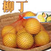 甜柳丁(袋裝)950g/約6顆