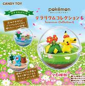 【五折】寶可夢 Re-Ment 盒玩 飼育球 第六代 日本正版 該該貝比日本精品