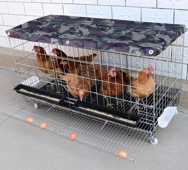 雞籠子家用大號養殖籠運輸鵪鶉籠鴨籠鵝籠 i萬客居