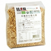 DR.OKO德逸 有機原生種大麥 500g/包