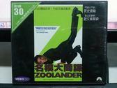 影音專賣店-V37-013-正版VCD*電影【名模大間諜】-班史提勒*歐文森爾森