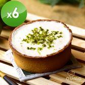 【奧瑪烘焙】厚奶蓋小農檸檬塔6入