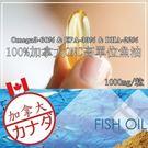 100%加拿大TG型魚油60粒
