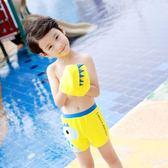 兒童泳褲男童平角泳衣帶帽寶寶分體泳裝【南風小舖】