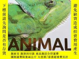 二手書博民逛書店【DK】ANIMAL罕見ENCYCLOPEDIA THE DEFINITIVE VISUAL GUIDE 精裝