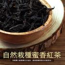 【屏聚美食】自然栽種蜜香紅茶(40±5克)