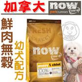 【 培菓平價寵物網 】now鮮肉無穀幼犬狗糧6磅2.72kg