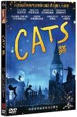 貓 電影版 (DVD)