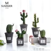 創意北歐風氧氣水泥盆仿真植物多肉仙人掌桌面裝飾盆栽仙人球盆景 卡布奇諾