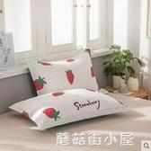 一對裝純棉枕套單人全棉枕頭套卡通48x74cm成人枕芯套『蘑菇街小屋』