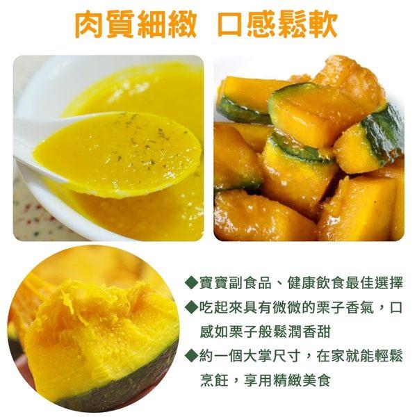 【果之蔬-全省免運】純日本品種無毒綠皮栗子南瓜x5顆(400g±10%/顆)