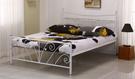 【南洋風休閒傢俱】臥室系列-丹尼雙人鐵床  現代簡約實雙人床 JF102-1 102-2
