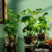 仿真綠植花卉套裝客廳擺件玻璃花瓶綠蘿植物假草小盆栽 解憂雜貨鋪