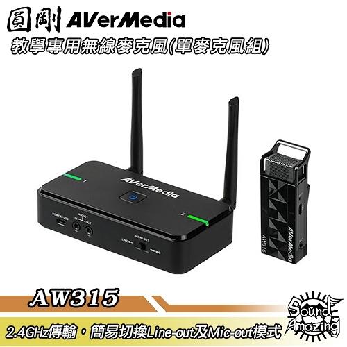圓剛 AVerMic AW315 教學專用無線麥克風(單麥克風組)【Sound Amazing】