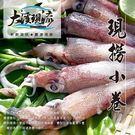 新鮮漁船現撈 小管 / 小卷  ( 50...