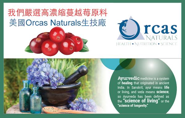 【Candice】康迪斯天然蔓越莓+益生菌膠囊 (60顆*2瓶)25倍濃縮蔓越莓Cranberry