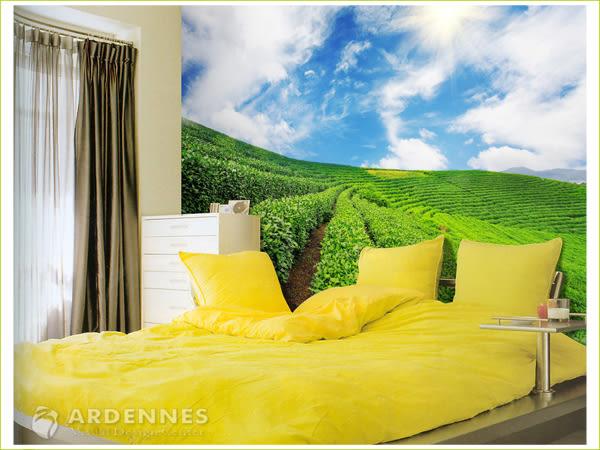 【ARDENNES】防水壁貼 壁紙 牆貼 / 霧面 亮面 / 草原花卉系列 NO.F029