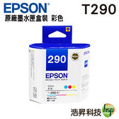 EPSON T290050 T290 彩色 原廠墨水匣 盒裝 適用 WF-100 機型