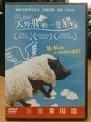 挖寶二手片-F01-018-正版DVD*電影【天外飛來一隻豬】-賽森加拜*希爾維艾斯提巴